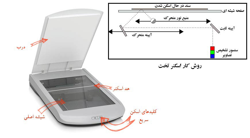 flatbed-scanner-Performance